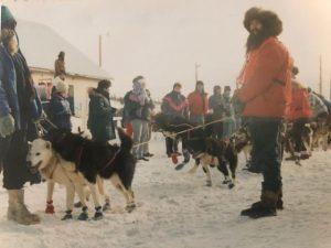 Yukon Quest dog sled race