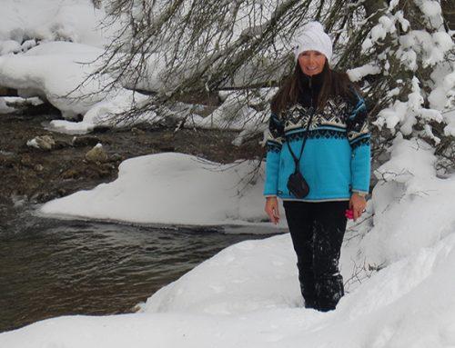 Snowy Owl Founder, Connie Arsenault's Life Story