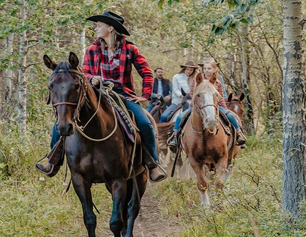 Husky and Horse Package - Boundary Ranch - Kananaskis, Alberta - Trail Rides